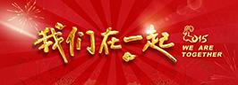 我们在一起——2015年度春节联欢晚会